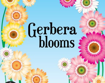Digital Clip Art - Gerbera Blooms - Six Beautiful Flowers in Full Bloom