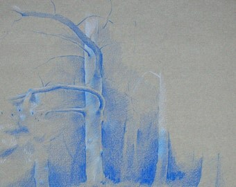 Tree trunks - an original pencil drawing