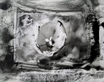 Flower - a distressed hand-printed photograph
