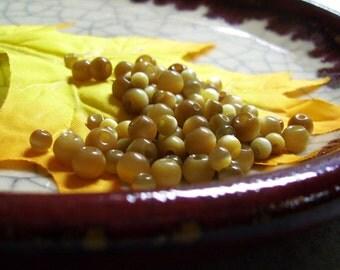 Warm Cider - Cats Eye Bead Mix