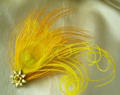 sunburst -  golden yellow feather fascinator with bird friendly feathers
