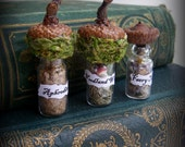 Woodland Faery Spell and Potion Bottles - Fae Accessories - Handmade - Miniature - Just the right size for the little folks.
