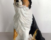 PAINTED BORDER COLLIE