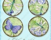 Digital Winged Jewels 20mm 16mm 12mm circle collage sheet,AJR-338B daisy bottle cap art, hummingbird blue butterfly, dragonfly, hydrangeas