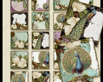 Digital Printable Vintage Peacocks n Magnolias Digital Collage 1.5 inch Square  AJR-247 feather damask pendants wedding favor gift tags