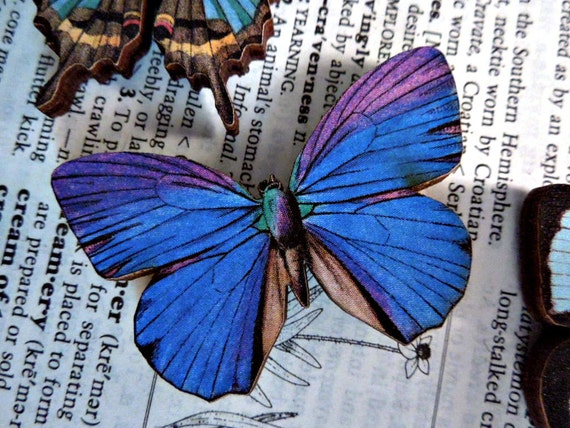 No. 6 Wooden Butterfly Magnet - One Dark Blue and Purple Color Laser Cut Insect