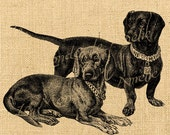 Digital sheet image Dogs vintage burlap Pet Download Printable For tea towel label tag iron on transfer fabric handbag napkins pillow n734