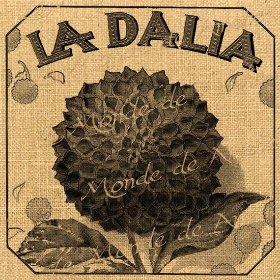 La Dalia  flower leave ads advertising vintage large printable download original gift tag burlap label napkins burlap pillow Sheet n.450