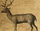 INSTANT DOWNLOAD Deer Vintage Illustration - Download and Print - Image Transfer - Digital Collage Sheet by Room29 - Sheet no. 328