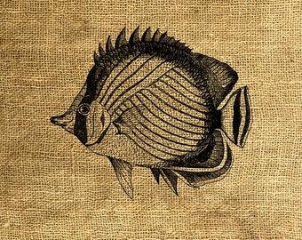INSTANT DOWNLOAD Fish Vintage Illustration - Download and Print - Image Transfer - Digital Sheet by Room29 - Sheet no. 193
