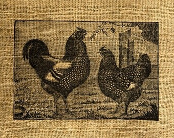 INSTANT DOWNLOAD Chickens Vintage Illustration - Download and Print - Image Transfer - Digital Sheet by Room29 - Sheet no. 277