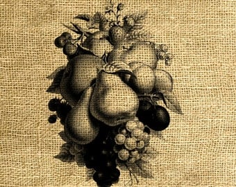 INSTANT DOWNLOAD Fruits Vintage Illustration in Sepia and Black and White - Image Transfer - Digital Sheet by Room29 Sheet no. 561