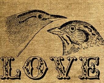 INSTANT DOWNLOAD Love Birds Vintage Illustration - Download and Print - Image Transfer  - Digital Sheet by Room29 - Sheet no. 601