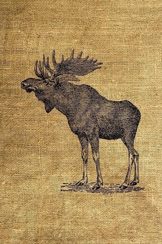 INSTANT DOWNLOAD Vintage Moose Illustration - Download and Print - Image Transfer - Digital Sheet by Room29 - Sheet no. 146