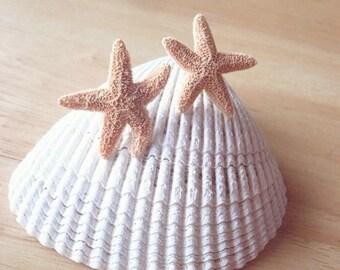 Aquamarine's Starfish Earrings Real Starfish Studs Inspired By Aquamarine Movie Mermaid Nautical Ariel Beach Accessories Womens Gift For Her