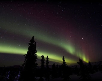 aurora highway, celestial photography, fine art print, northern lights, borealis, night skies