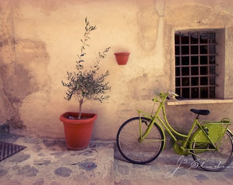 bicycle photograph, cinque terre photography, bike art print, pastel lime green, italy landscape