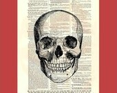 Spooky Smiling Skull (skull1) - upcycled 8x10 1898 dictionary page print - BONUS - Buy 3 Prints, Get 1 More For FREE