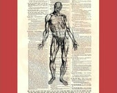 Vintage Body (body1) - upcycled 8x10 1898 dictionary page print - BONUS - Buy 3 Prints, Get 1 More For FREE