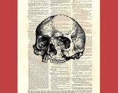 Vintage jawless skull - upcycled 8x10 1898 dictionary page print - BONUS - Buy 3 Prints, Get 1 More For FREE