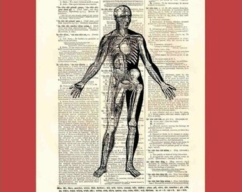 Vintage transparent man - upcycled 8x10 1898 dictionary page print - BONUS - Buy 3 Prints, Get 1 More For FREE