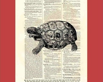 Vintage tortoise (tortoise1) - upcycled 8x10 1898 dictionary page print - BONUS - Buy 3 Prints, Get 1 More For FREE
