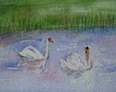 ACEO - Swans - 7 Card Draw