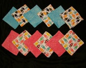 6 Minky Wash Cloths- You CHOOSE the Gender- Ready to Ship