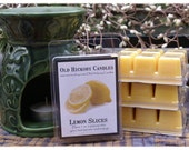 Lemon Slices Breakaway Clamshell Candle Tarts True Lemon Scent