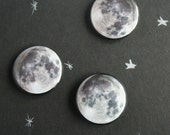 Moon Magnets four pack