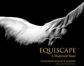Equiscape - A Modernist Nude (hardcover book)