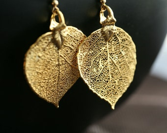 Baby aspen leaf earrings,24k gold,mothers gift,birthday,bridesmaid gifts,fall winter wedding,autumn,bridal jewelry
