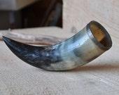 My Grandpa's Bull Horn