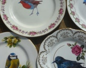 Robin birdie wall art vintage side plate - other birds available