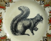 Squirrel inky illustration wall art vintage dinner plate