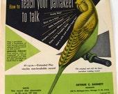 How to Teach Your Parrakeet to Talk by Arthur Barnett 1951