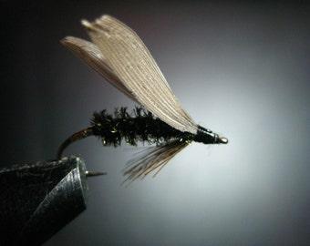 Leadwing Coachman,trout
