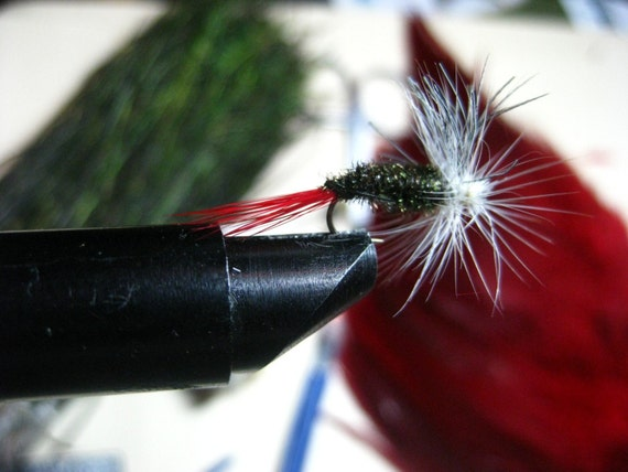 Dry fly, trout
