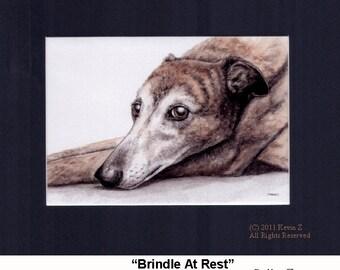 Greyhound Brindle At Rest Signed Art Print
