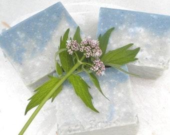Sea Salt Milk Soap