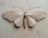 Soft sculpture of a moth made from tablecloth.