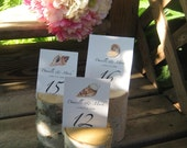 "12 Birch Bark Table Number Holders 3""  Tall for your  Rustic Woodland Wedding"