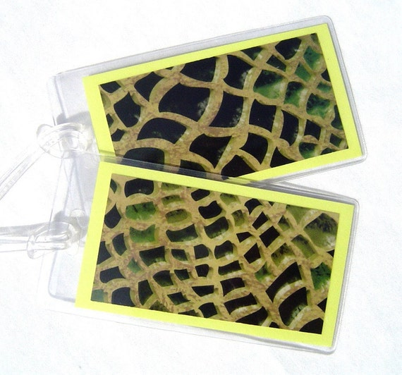 Snakeskin luggage tags bag tags set on yellow in vinyl cases