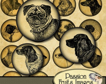 "Antique Dogs 1.5"" Circles Digital Collage Sheet --Digital Download"