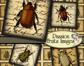 Victorian Insects on Antique Diary Pages Inchies -Digital Collage Sheet-- Instant Download