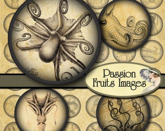 1 Inch Octopus and Squid Images Inchies  Bottlecap Circles Digital Collage Sheet-- Instant Download