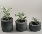 Round Concrete Pot - set of 3