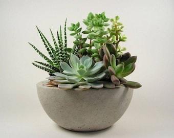 Concrete  Bowl - Light Grey