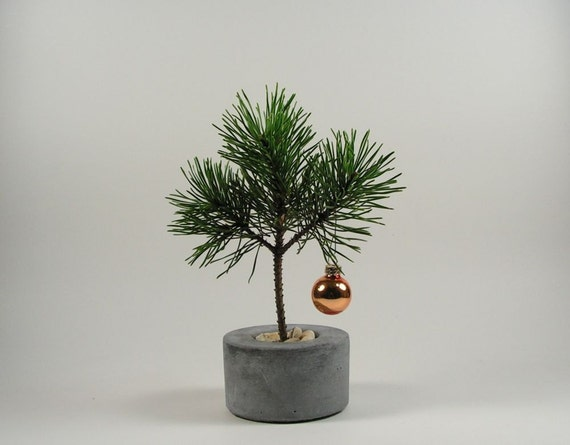 Mini Round Christmas Tree Pot
