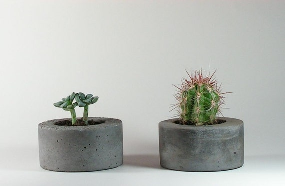 Mini Concrete Planters : Mini round concrete planter